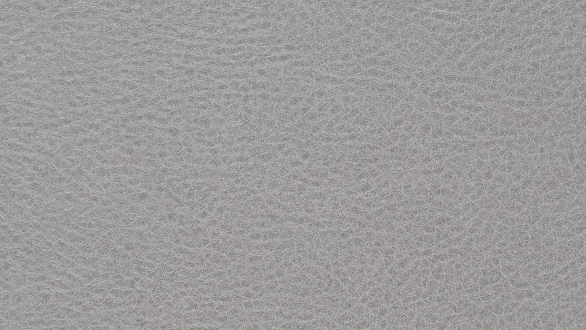 Glattleder grau